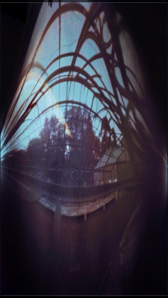 Marcin_Kulikowski_solargraphy_solarigrafia_legnica_palmiarnia_1